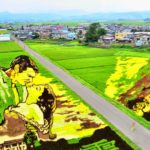 Inakadate, el pueblo japonés que hace arte en sus campos de arroz